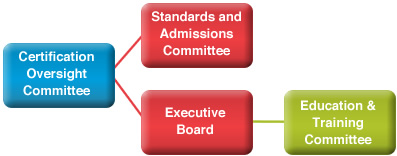 The EACTP Committee Structure